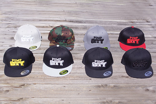 Pump City Fitted Cap