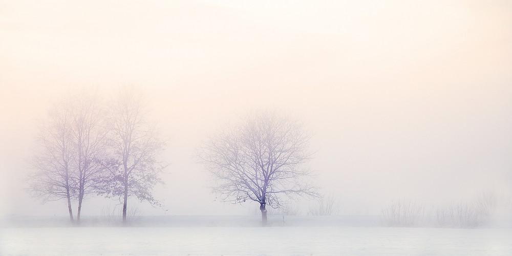 La soledad de Inma Bergger