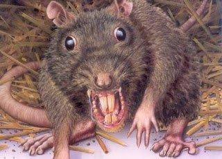 Bocaditos de Suspense: «Ratas»