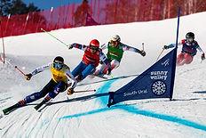 Ски-кросс FIS