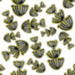 botanicalexp.jpg