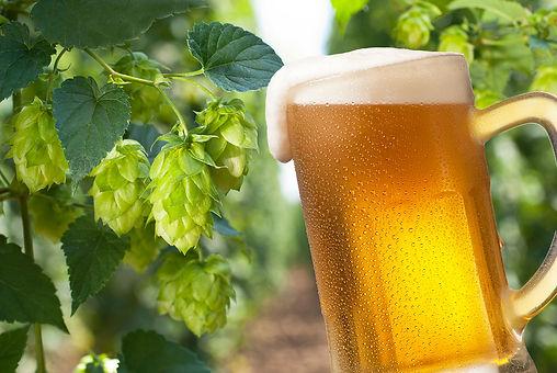 bigstock-Beer-43190713.jpg