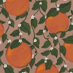 the citrus compulsion