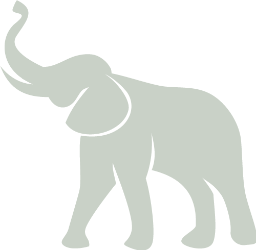 Brandt-Icon-Green-25.png