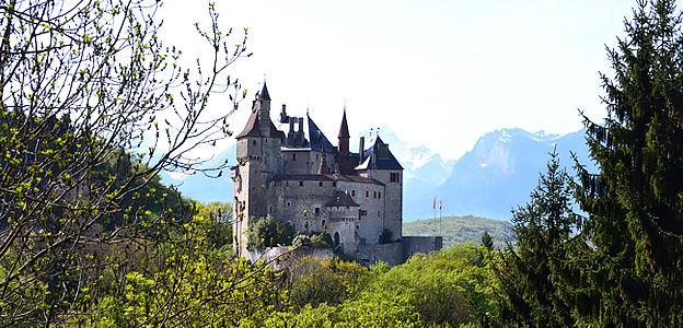 Chateau_Entreprises_arbres_624x300px.jpg