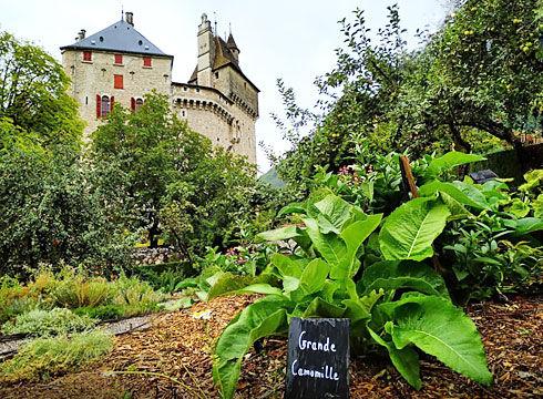 Potager-du-Chateau-de-Menthon_490x360px_