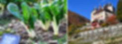 SLIDER_DOMAINE-NATUREL.jpg