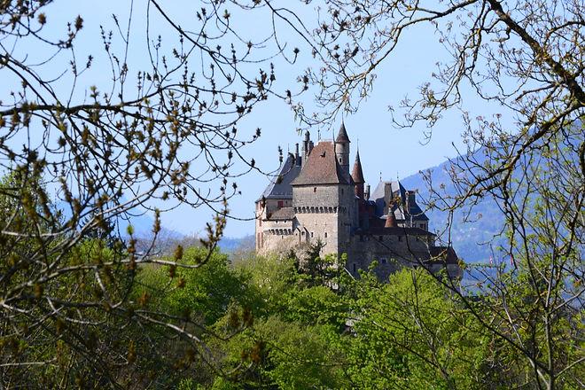 Vue château forêt 2. Nicolas Martinon.JP