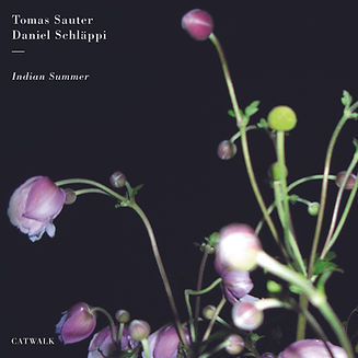 indian_summer_cover.jpg