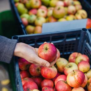 Food Storage Smarts
