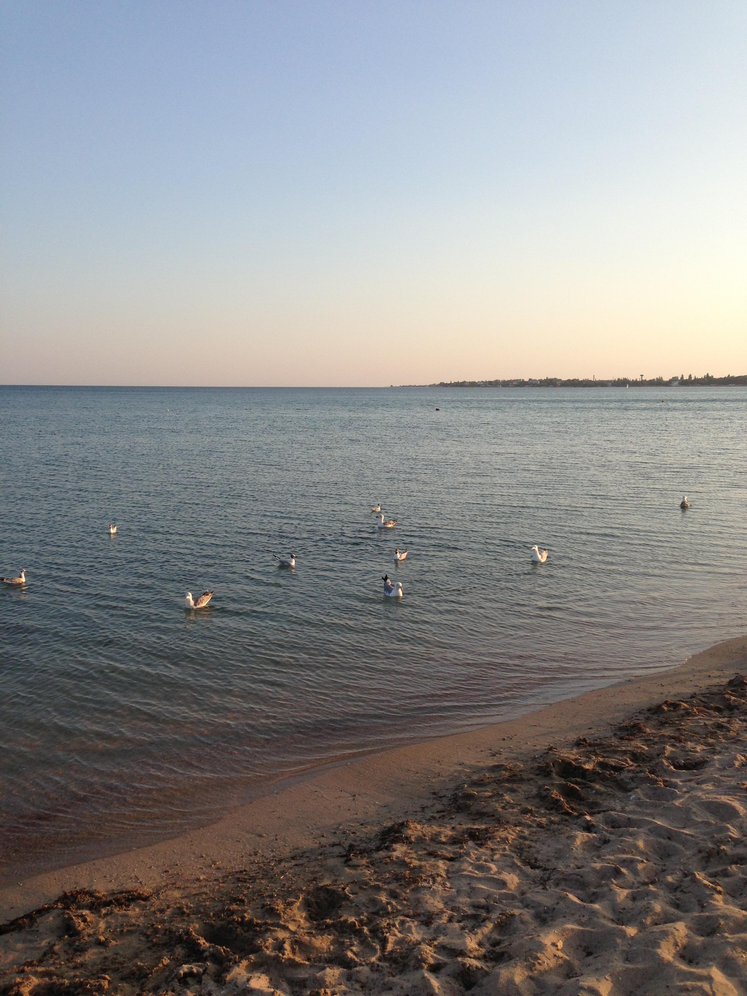 """На озере грязелечебницы """"Мойнаки"""""""