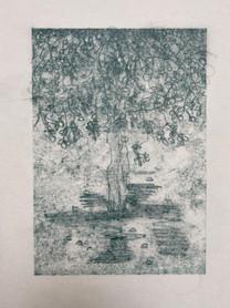 Tree monoprint