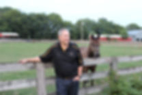 Ad JPEG 2 with Horse and fence.JPG