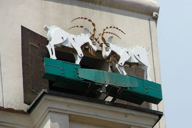 poznanskie koziolki project neighbours