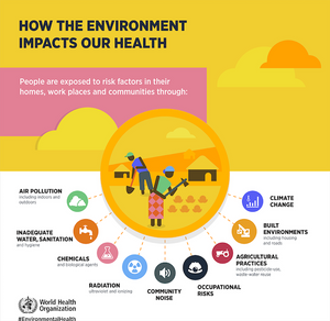 environmental causes of deaths project neighbours