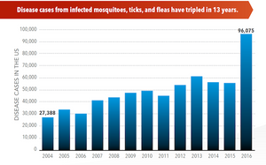 mosquito-borne diseases are more frequent