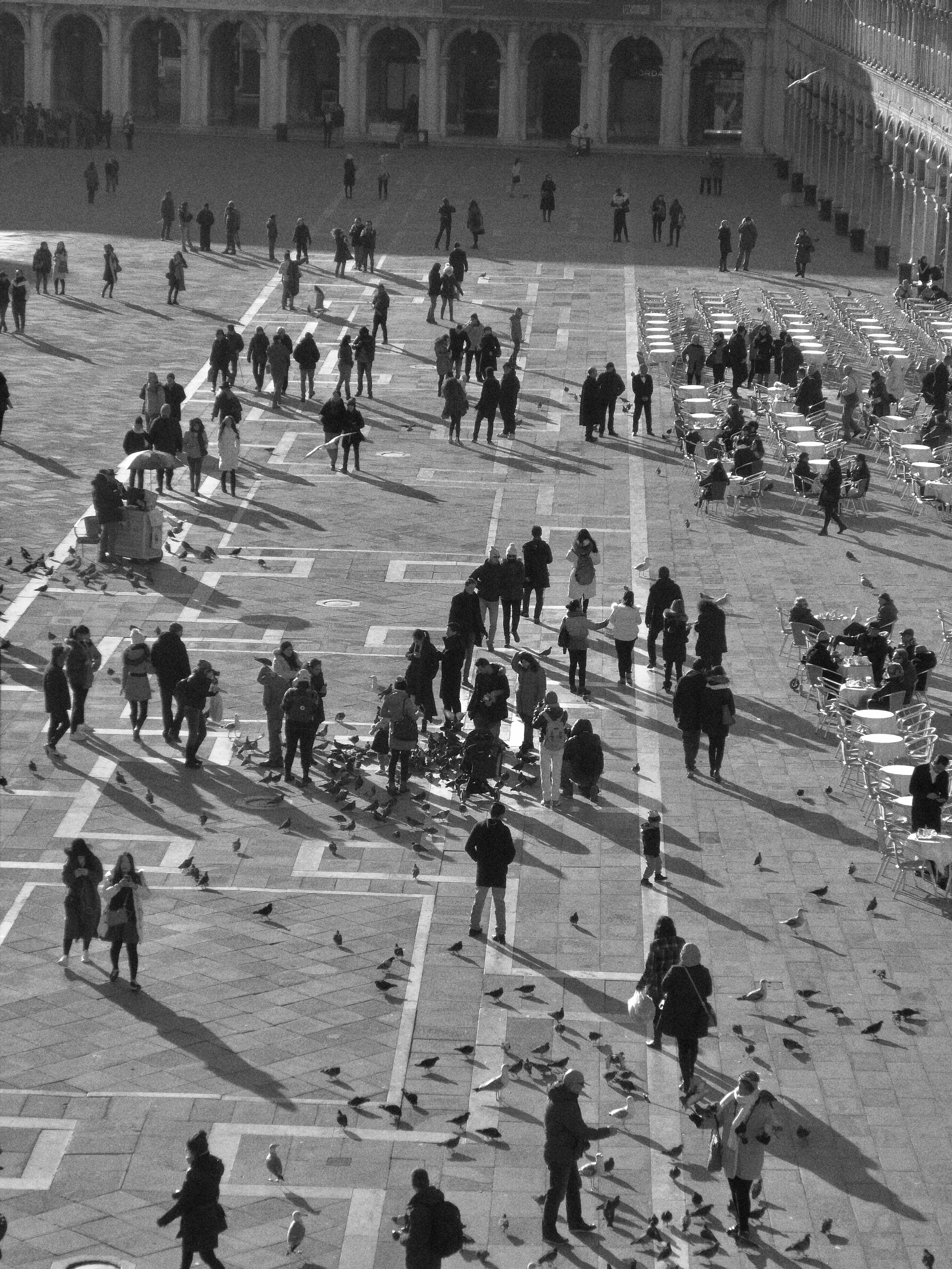 Piazza San Marco Crowds (2017)