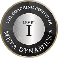 Level 1 Meta Dynamics Certified Practitioner