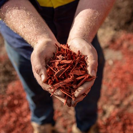 Sunset Red Mulch.jpg