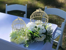 Birdcages and signing table
