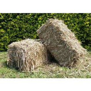 Sugar Cane Bale