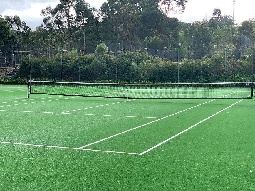Mod Grass courts.jpg