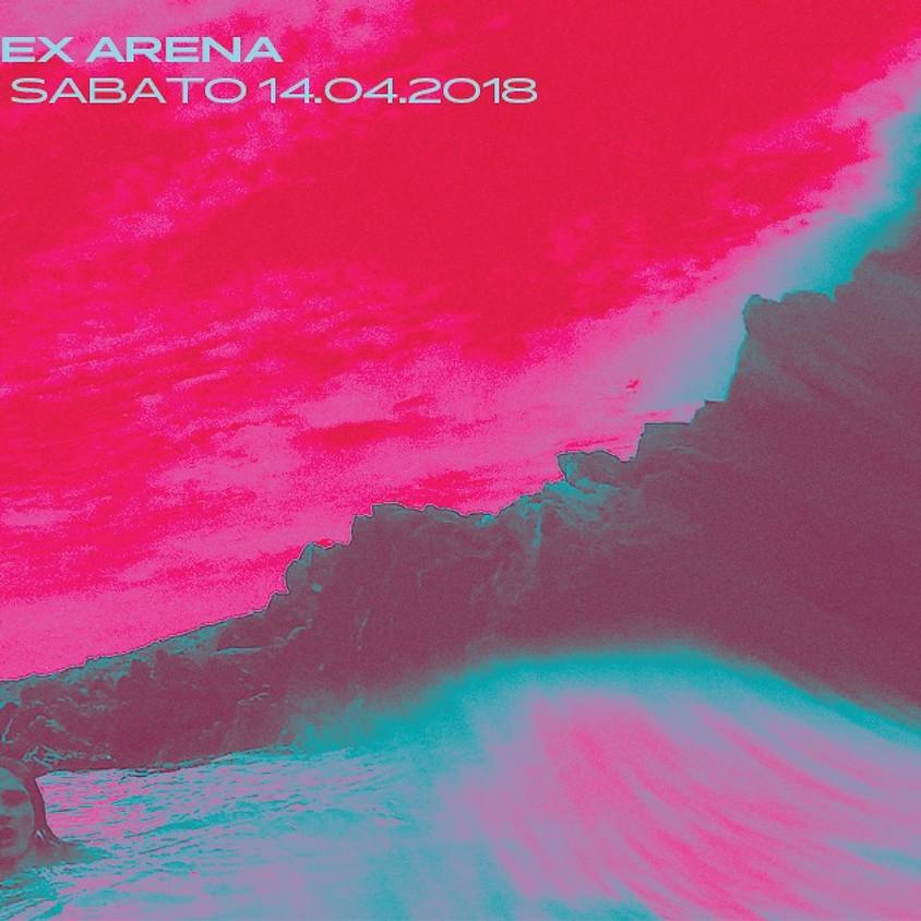 Universal Sex Arena (ITA)