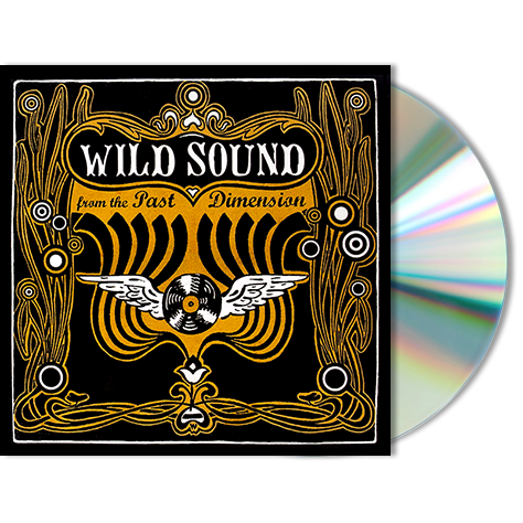 VARIOUS ARTISTS -  Wild Sound From The Past Dimension