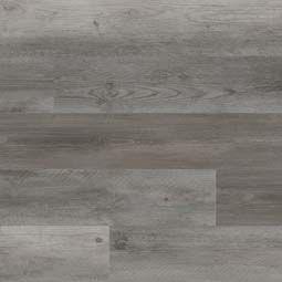 cyrus-katella-ash