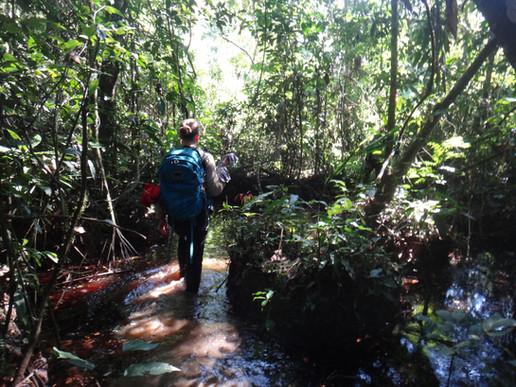 Amazon trekking