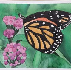 Watercolor, Age 9