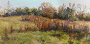 Landscape, Oil on Panel, 10x20