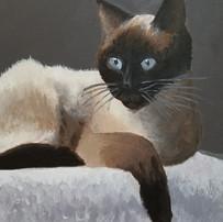 Acrylic, Age 12