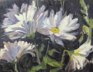 Flowers, Oil on Canvas, 12 x 16