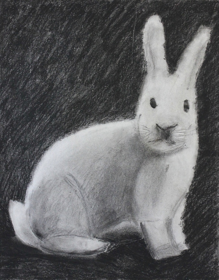 Charcoal on Paper, 12 year old student