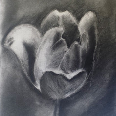 Charcoal, Age 10
