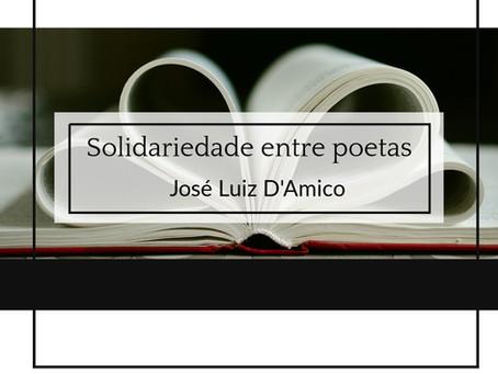 Solidariedade entre poetas