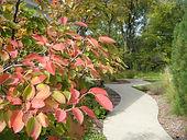 memorial garden path