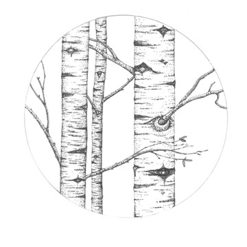 Birch SOLD