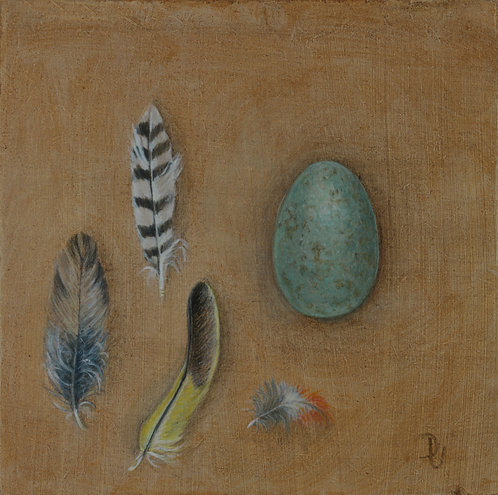 Blackbird's Egg and Feathers