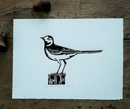 Little Trotty Wagtail Original Linocut Print