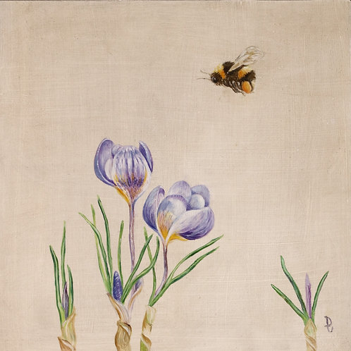 Crocus and Bumble