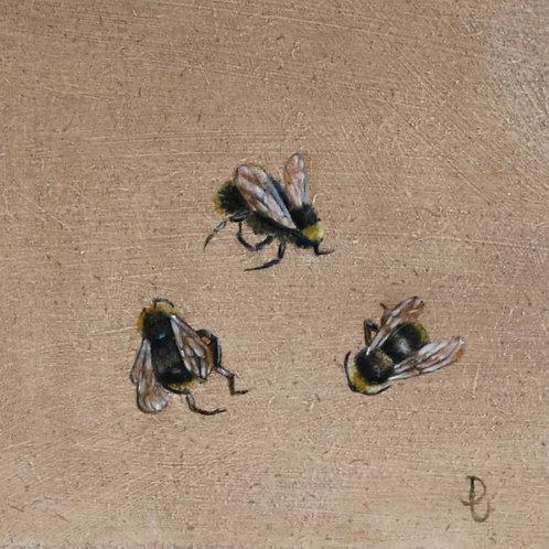 Three Bees A -Dancing