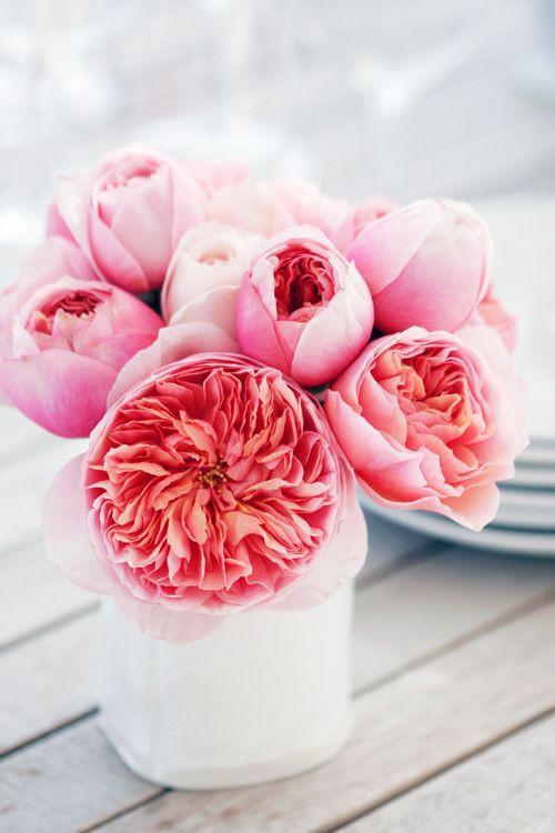 Пионовидная садовая роза в букете