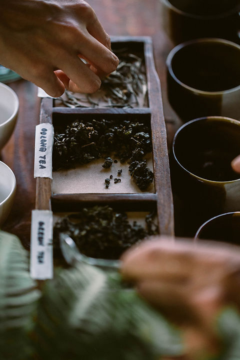 tea workshop