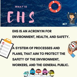 What is EHS?