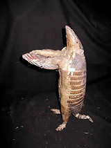 Armadilo with Shell