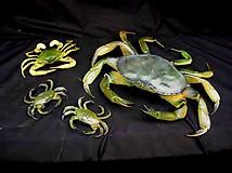 Crab Family