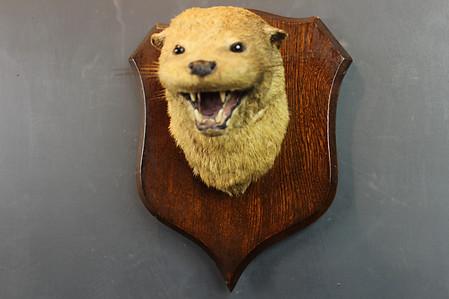Otteer Mask
