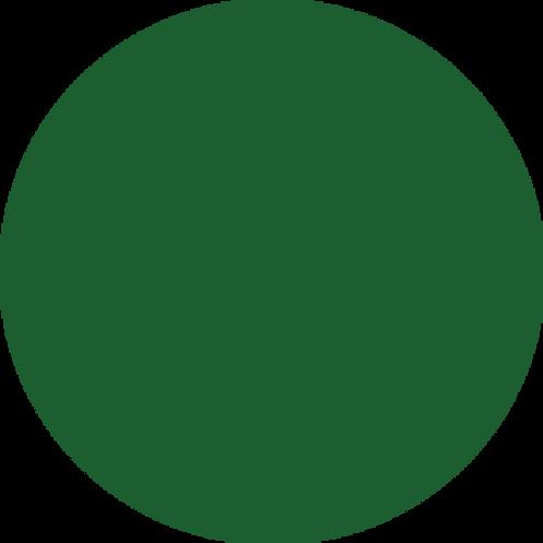 أصباغ ريزن أخضر غامق مركز 50 غرام